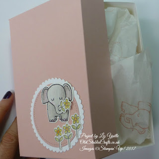 A Little Wild Gift Box and stamped Tissue Paper