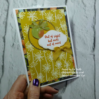 Whole Lot of Lovely Designer Series Paper, Orange Blossom Stamp Set Stampin Up oldstablescrafts.co.uk