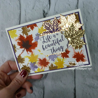 Colorful seasons stampin up card