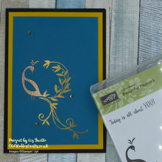 Sale-a-Bration with Beautiful Peacock multi colour heat embossing