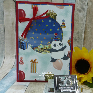 Party Panda Birthday Shaker Card