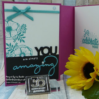 Amazing You Celebrate You Shimmer Ribbon