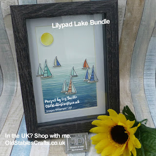 Loving this Lilypad Lake Sailing Picture