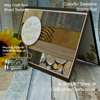 May Craft Box Project Ideas – Not Just For Men