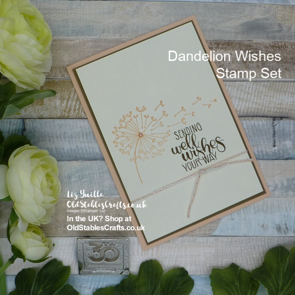 Dandelion Wishes Soft and Elegant Card