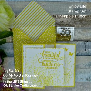 Enjoy Life in Pineapple Punch Cute Gatefold Card