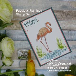 Fabulous Flamingo Team Colour Challenge