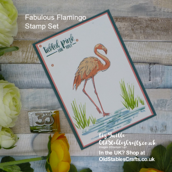 Fabulous Flamingo Team Colour Challenge