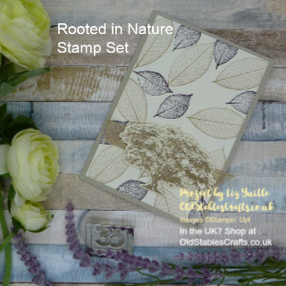 Rooted in Nature Thank You Card