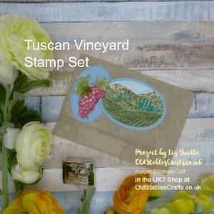 Tuscan Vineyard Masculine Card