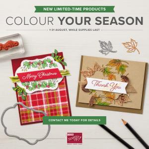 Autumn Winter Colour Your Season Image
