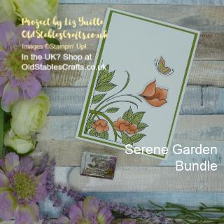 Cool and Calm Serene Garden