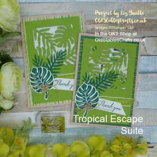 Tropical Escape Designer Series Paper Catalogue Case Card