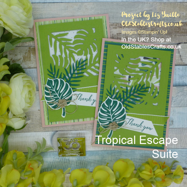 Tropical Escape Suite Card