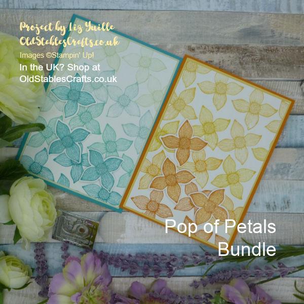Pop of Petals Ombre Cards