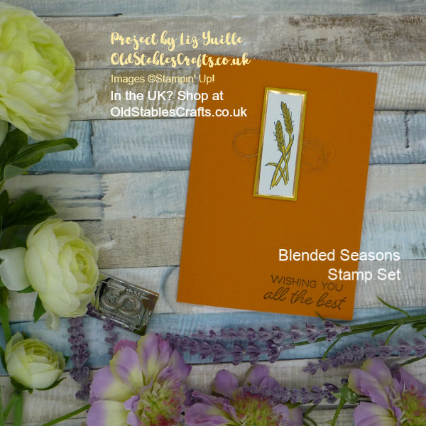 Tiny Image Huge Impact. Blended Seasons Card