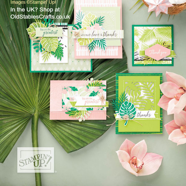 Tropical Chic Suite August Craft Box