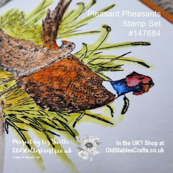 Pleasant Pheasants Watercolour Card