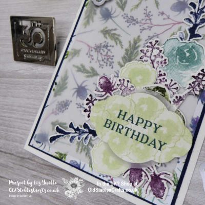 First Frost Birthday Card Die Cut Overload