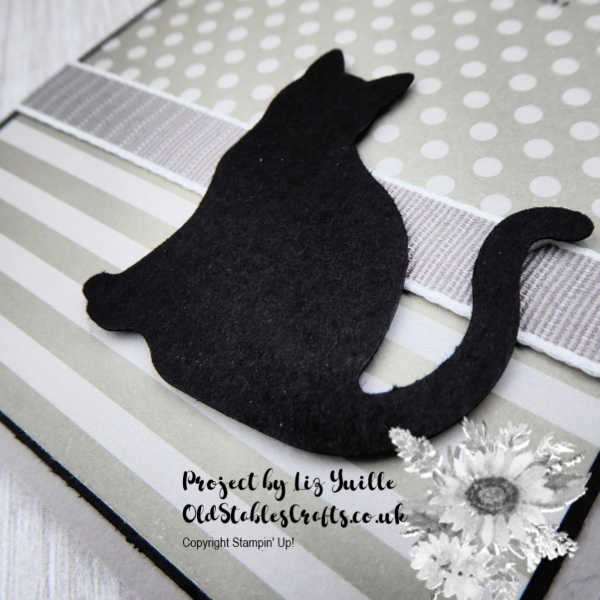 Cat Shaped Hole card