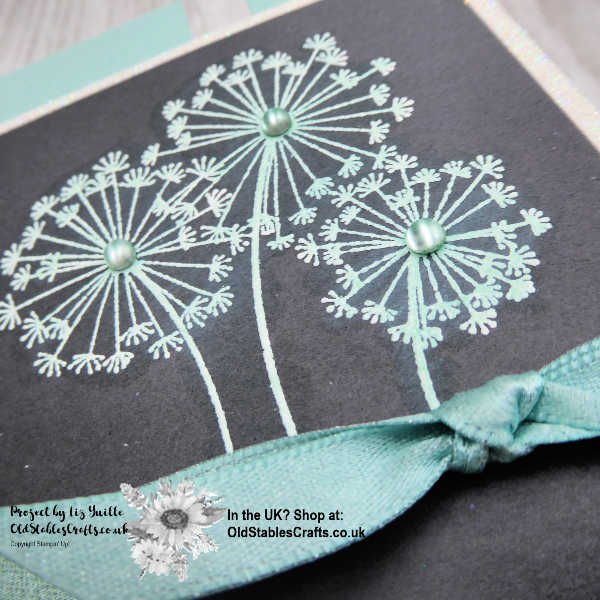 Dandelion Get Well Card