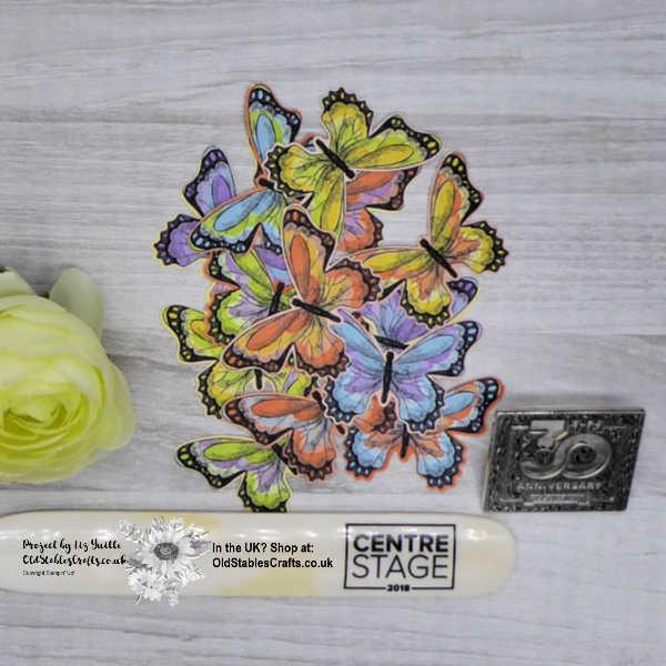 Butterfly Gala Butterflies