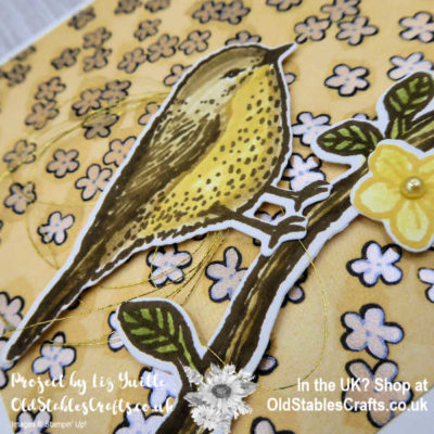 Best Birds Revisited for #simplestamping Saturday