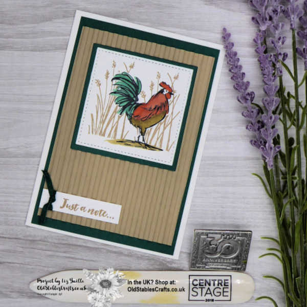 Home to Roost Masculine Card