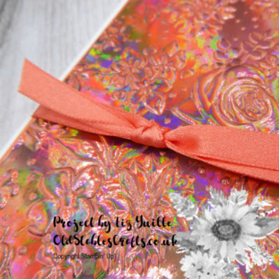 Country Floral Embossing Folder Goes Holographic