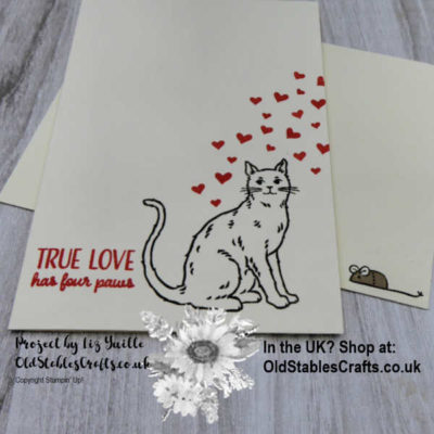 Nine Lives – #simplestamping Saturday