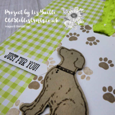 Happy Tails Gingham Tag Card Close Up