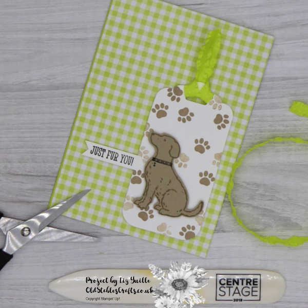Happy Tails Gingham Tag Card