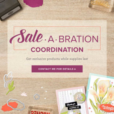 Sale-a-bration Coordination Items Selling Fast