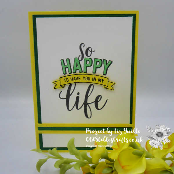 Amazing Life Simplestamping Casual