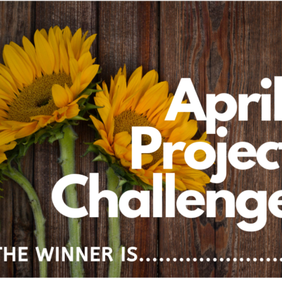 Team Challenge Sunday! See What The Sparkling Sunflowers Have Been Up To