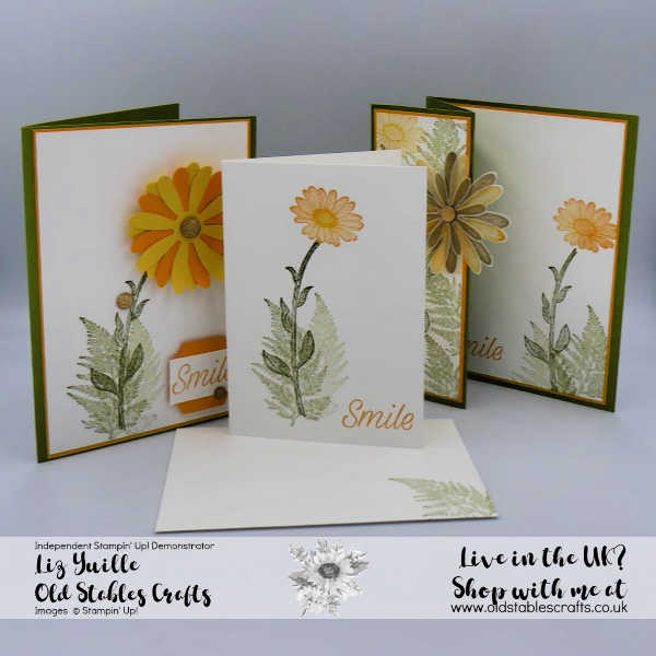 Daisy Lane #Simplestamping Saturday sq