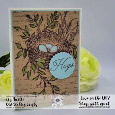 Hugs From Shelli Paper Pumpkin Alternative Projects