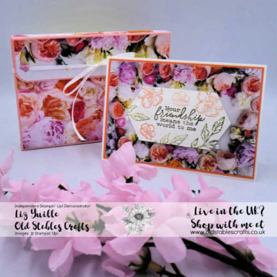 Petal Promenade Gift Box and Give Away!
