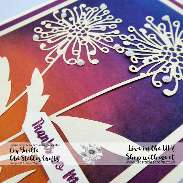 Laser Cut paper Dandelion card with inked sunset background