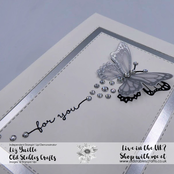 The Ultimate Sparkling Butterfly Gala Silver