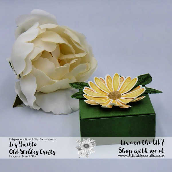 Daisy Lane Sunflower Gift Box