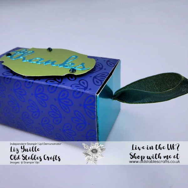 Double Ferrero Rocher Slider Treat Box, noble peacock, see a silhouette, pretty peacock, foil, punch, pacific point, rhinestones, die cut
