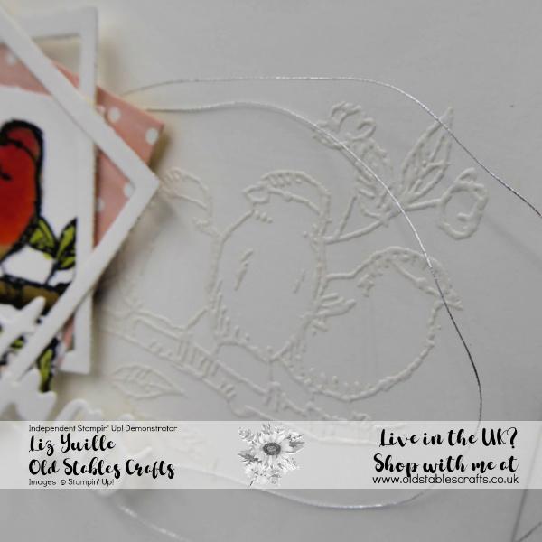 Free As A Bird Robin Christmas Card