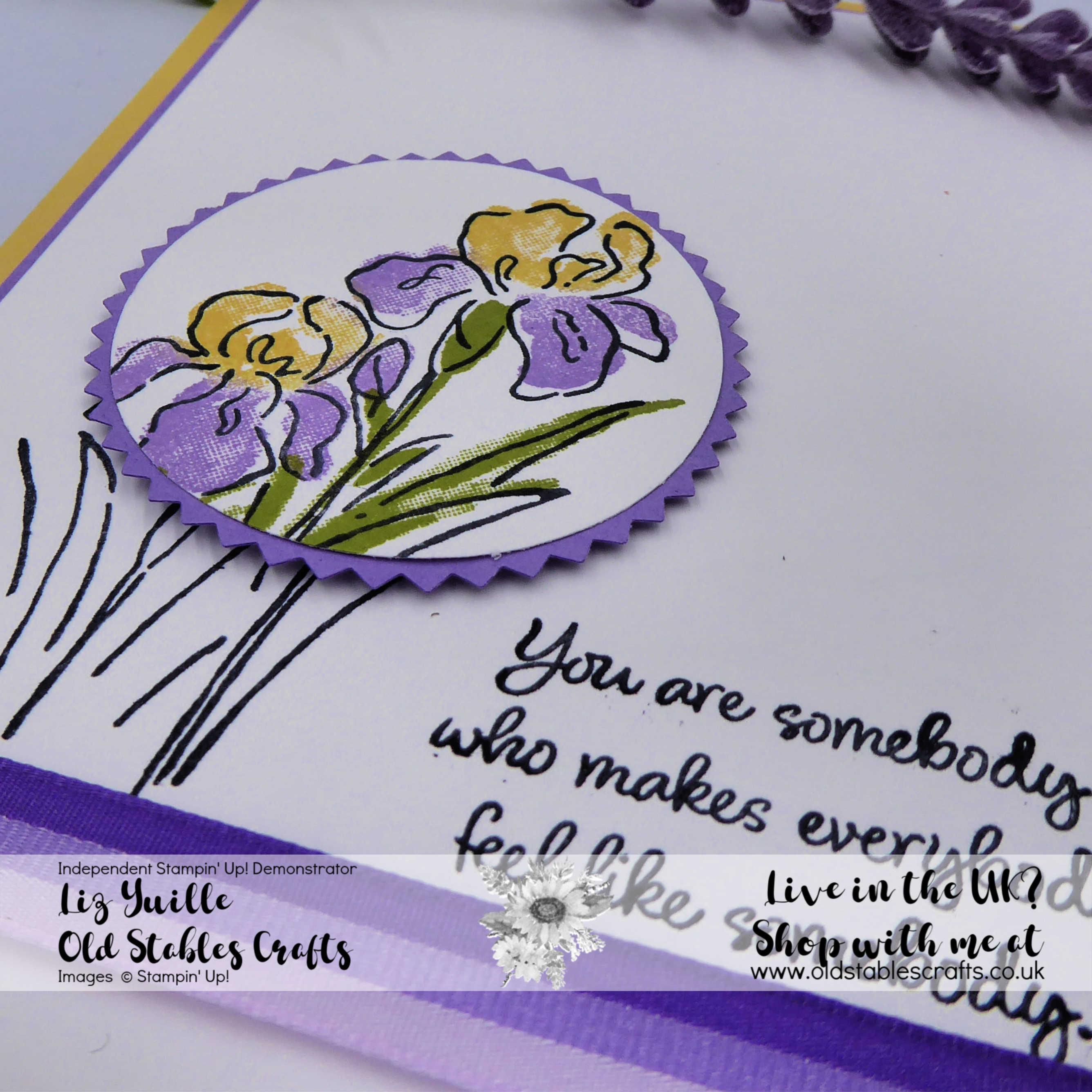 Inspiring Iris #SSS Casual Punched image