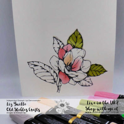 Top Tip Tuesday – Blend Colouring Tips