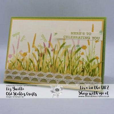 Friend Like You Wildflower Meadow