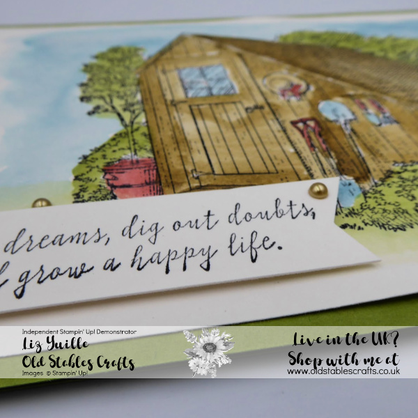 Garden Shed Easy Watercolouring Close Up