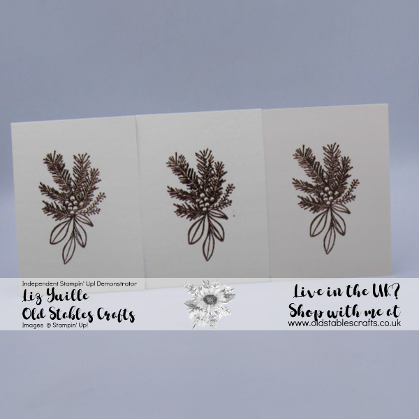 Heat Embossing for Watercolour Top Tip