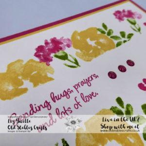 Inspiring Iris Border Pinks
