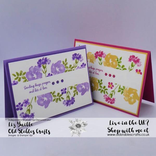 Inspiring Iris Border Purples and pinks